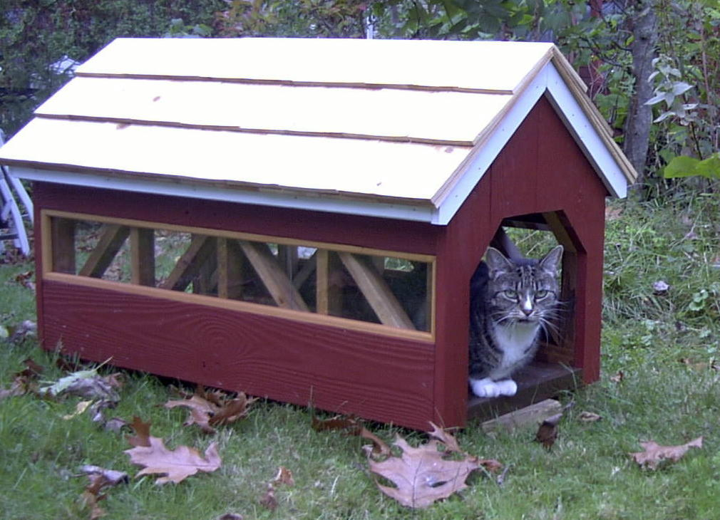 Covered Bridge Cat House